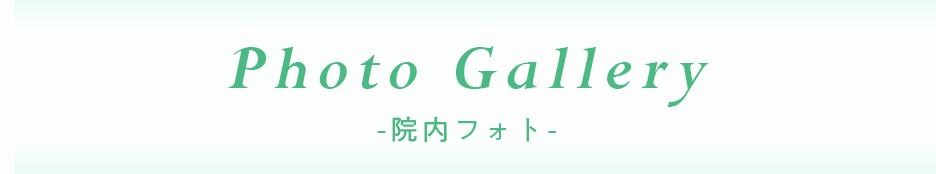 Photo Gallery -院内フォト-